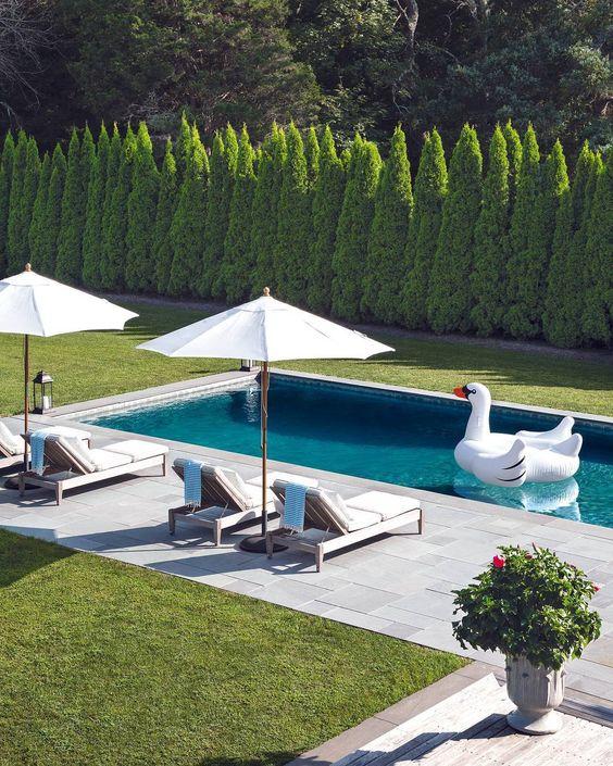 piscines qui vont vous faire rêver