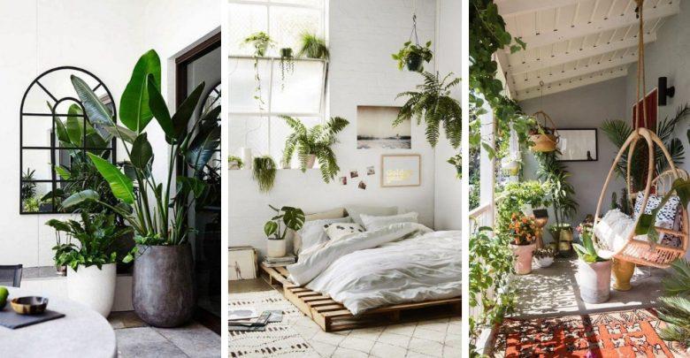 21 Idées Déco Pour Mettre En Valeur Des Plantes