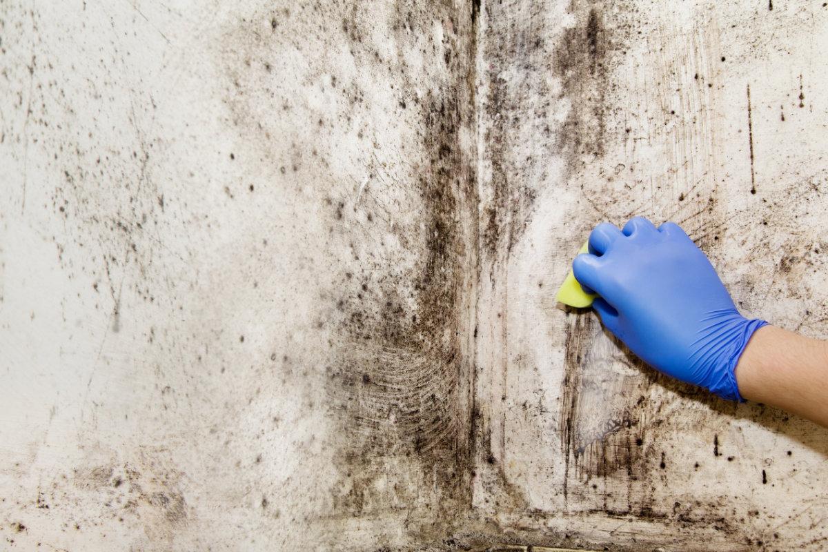 Mauvaise Odeur Armoire Linge 6 techniques efficaces pour s'échapper de l'humidité dans