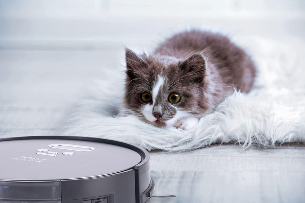 Amibot Animal Premium H2O