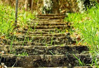 Dreams About Stairs - Signification et interprétation
