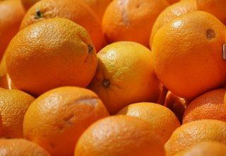 Rêves d'oranges - Signification et interprétation