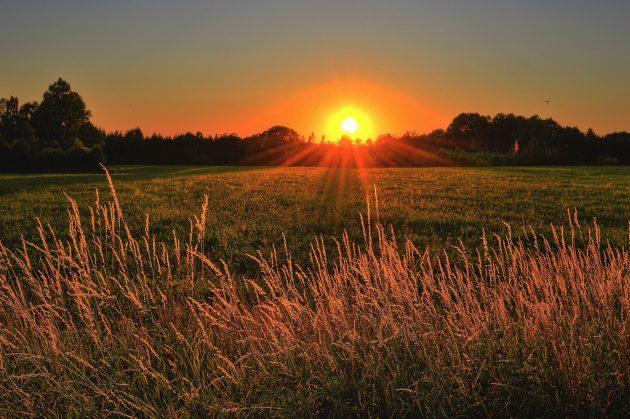 Ce qu'il faut savoir avant de construire une maison en milieu rural