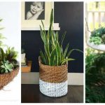 12 idées de pots et cache-pots pour vos plantes