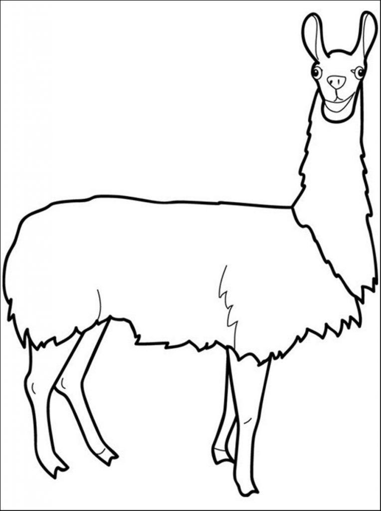 Lama à colorier imprimable