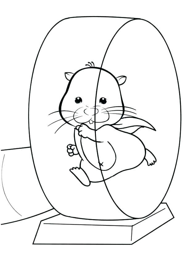 Coloriage de roue de hamster