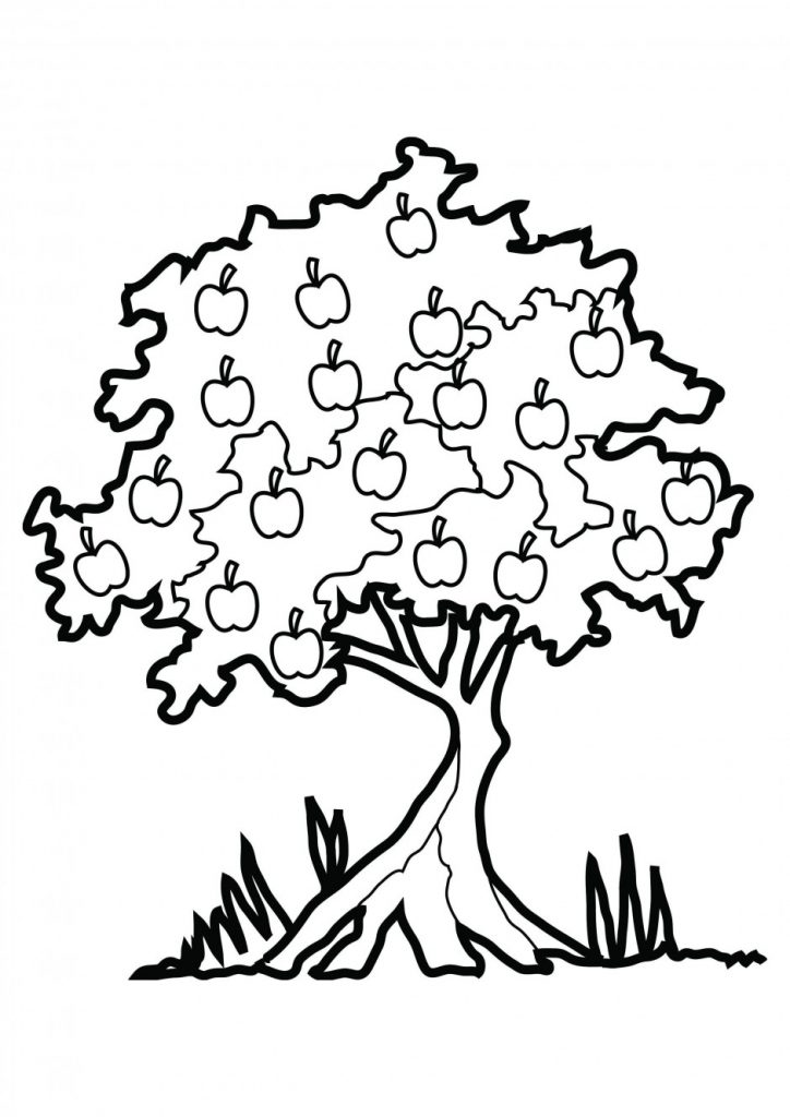 Coloriage pommier Johnny Appleseed