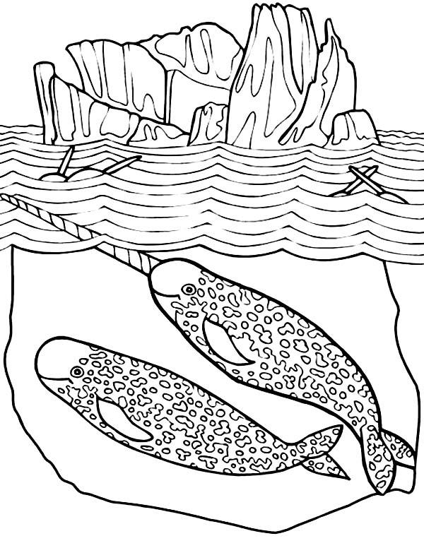 Coloriage de scène de mer narval