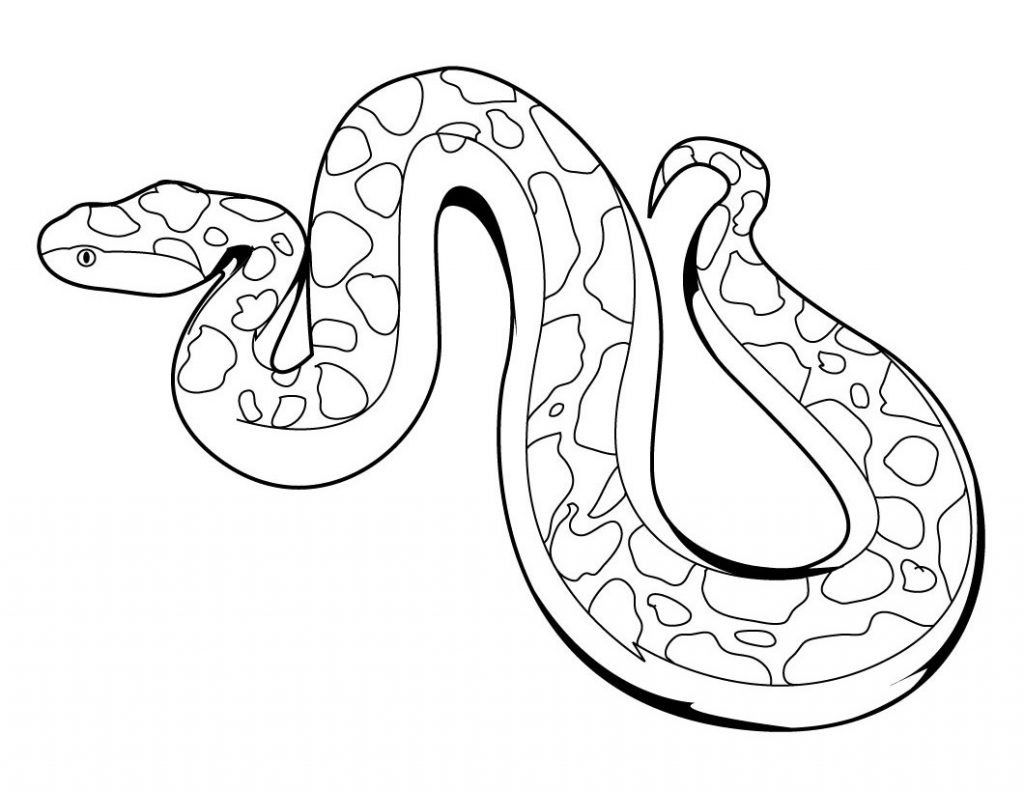 Serpent - Coloriage animaux du zoo