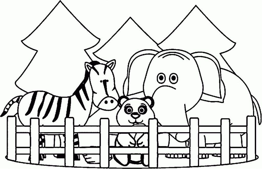 Coloriage animaux du zoo
