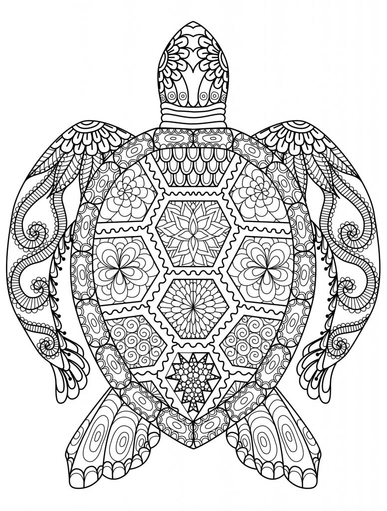 Coloriage Adulte Animaux - Tortue