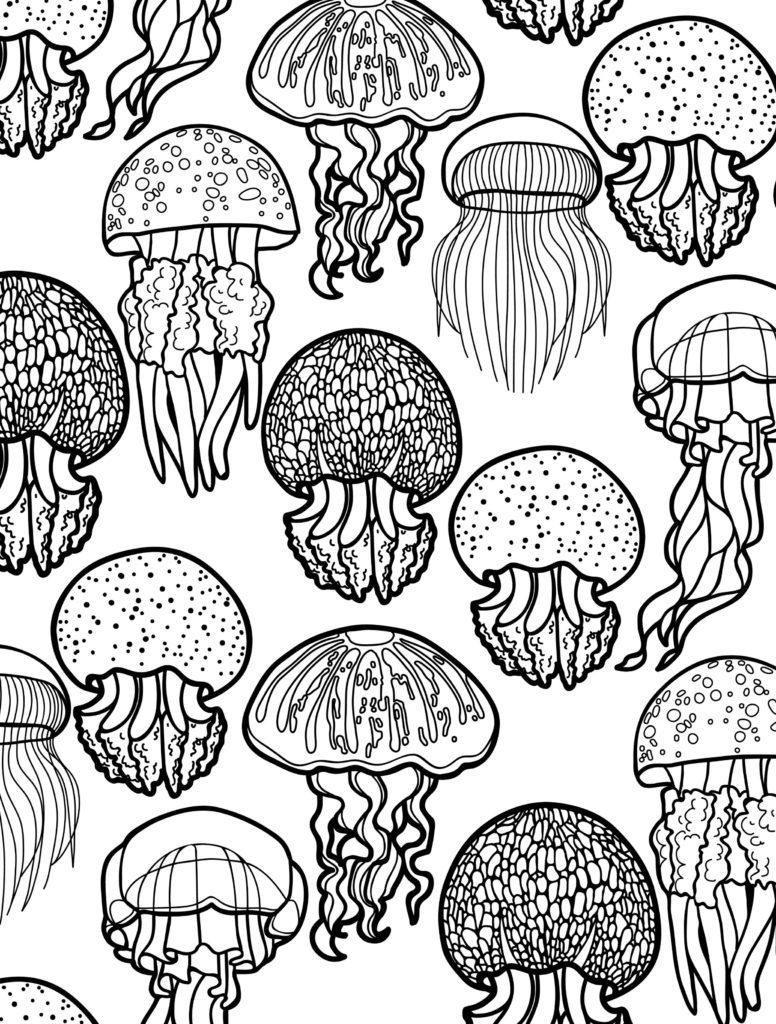 Coloriages d'animaux pour adultes - Méduse