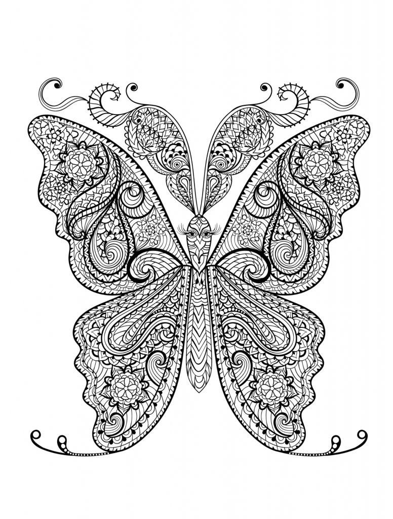 Coloriages d'animaux pour adultes - Papillon