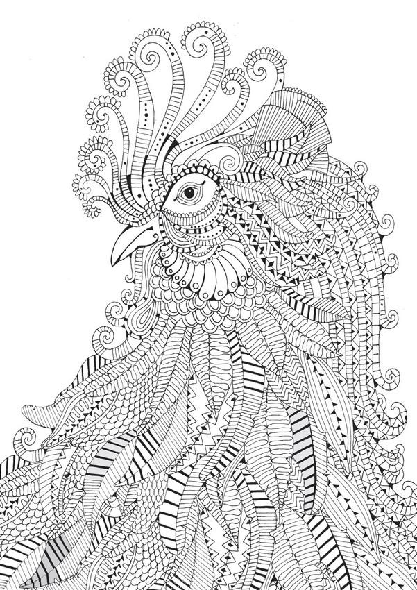 Coloriage adulte animaux - oiseau imprimable