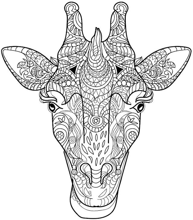 Coloriages d'animaux pour adultes - girafe