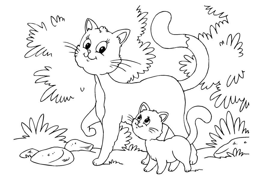 Télécharger des coloriages de chaton