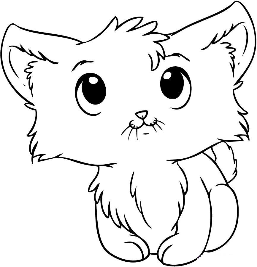 Coloriage de chaton mignon