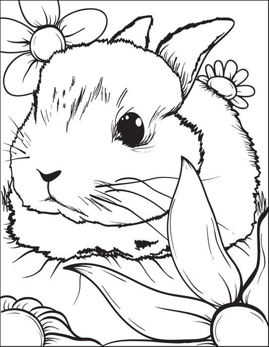 Télécharger la page de coloriage de lapin