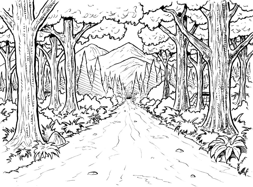 Coloriage de scène de chemin forestier