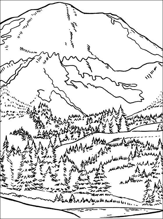 Coloriage forêt dans les montagnes