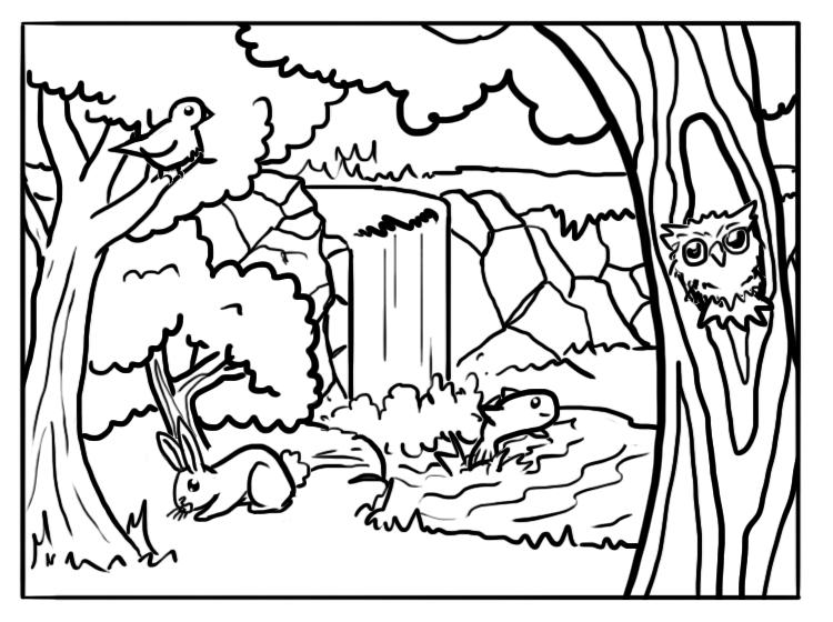 Coloriage animaux et forêt