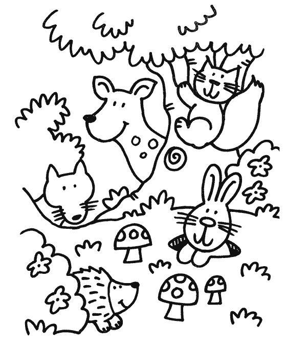 Coloriage animaux de la forêt