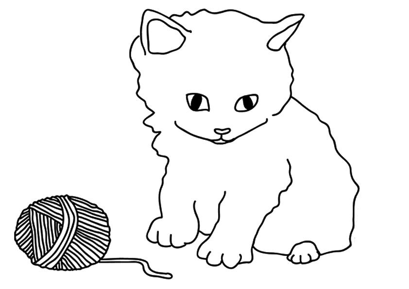 chaton avec fil à colorier