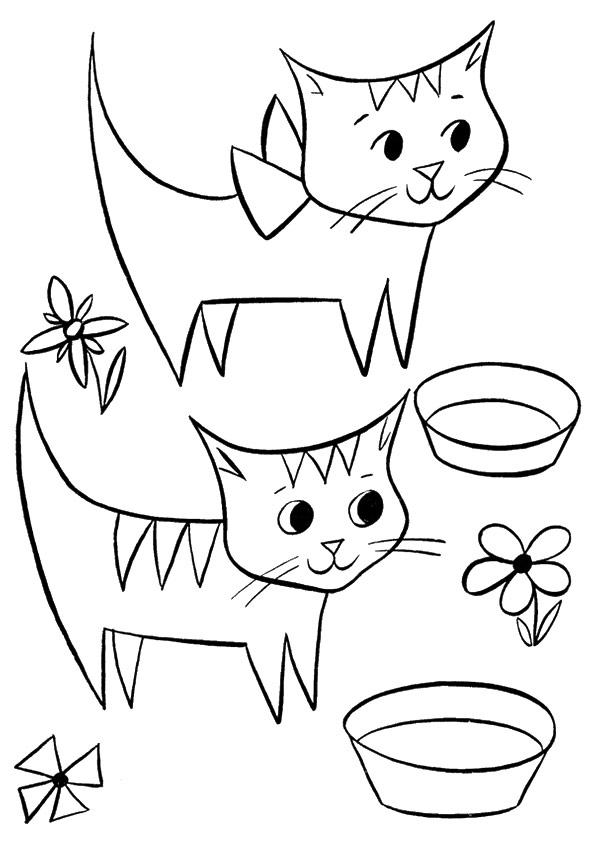 coloration de chaton