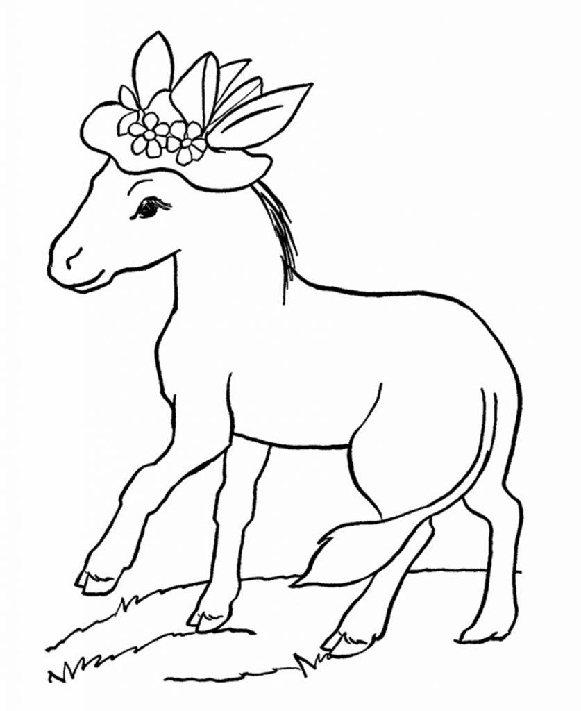 Coloriage d'âne