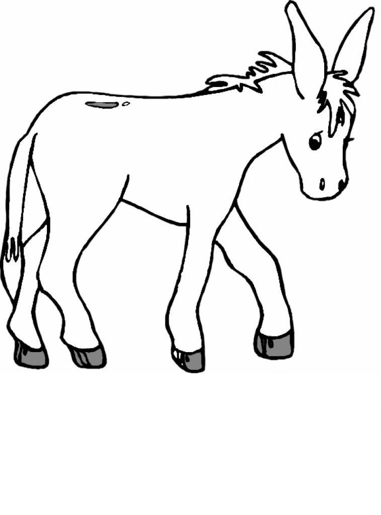 Coloriage âne pour les enfants