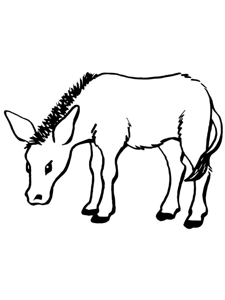 Coloriage âne à imprimer