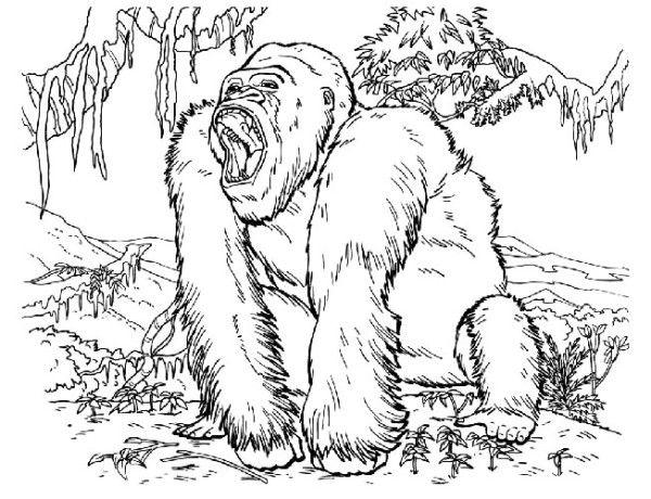 Coloriage King Kong