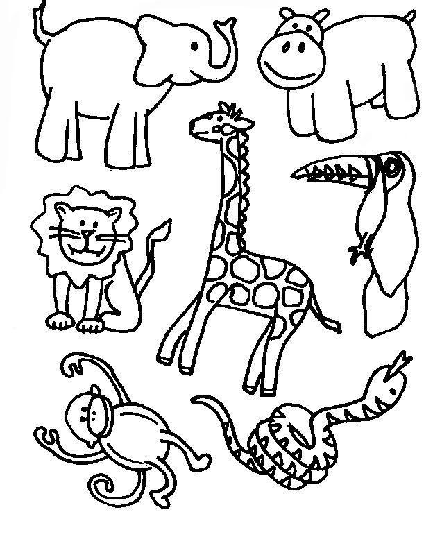 Coloriage animaux de la jungle sauvage
