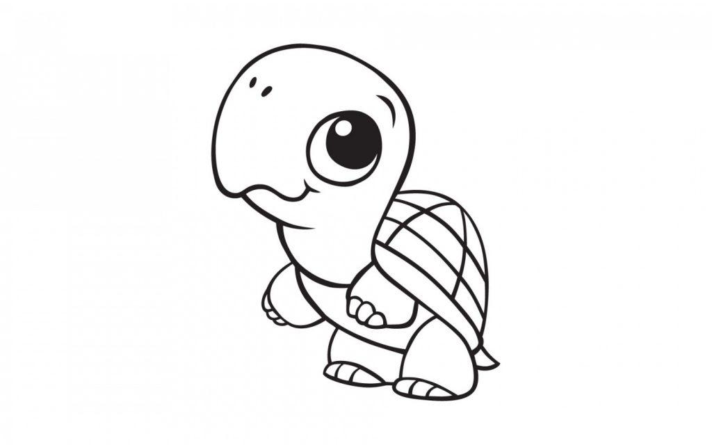 Coloriage bébé tortue