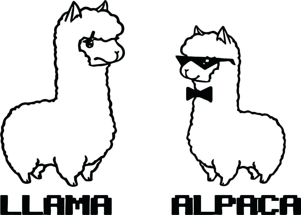 Coloriage animaux lama et alpaga