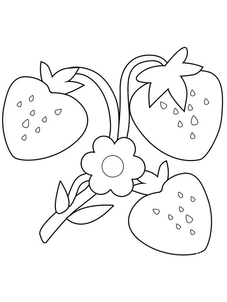 Coloriage fleur de fraise