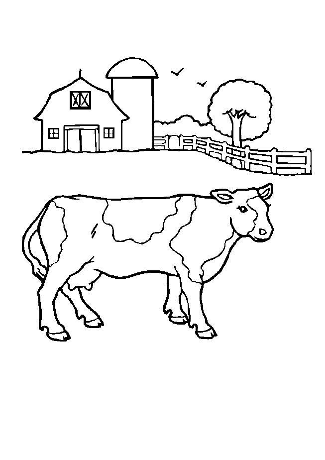 Coloriage vache de ferme