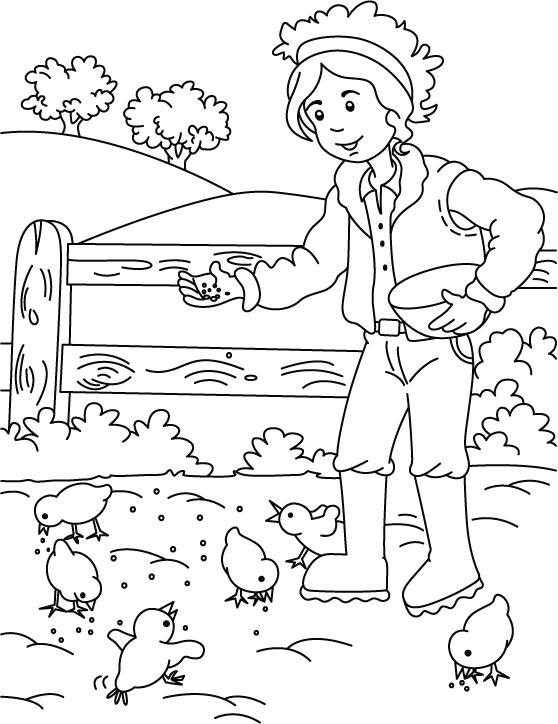 Coloriage fermier nourrir les poulets