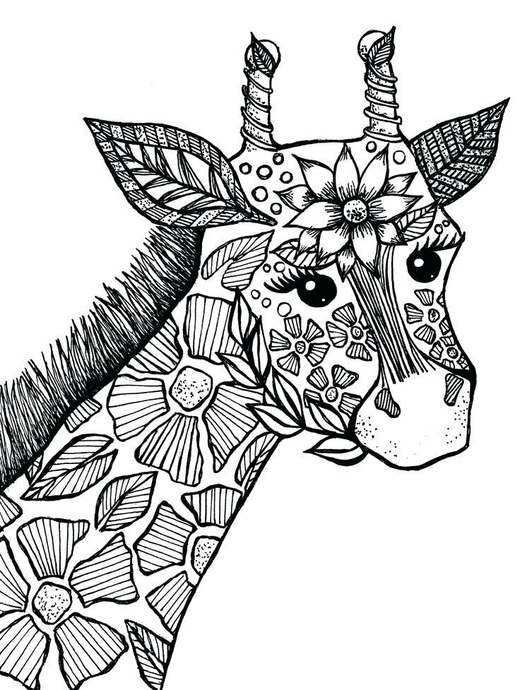 Coloriage animaux girafe zen