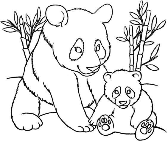 Coloriage panda et bébé