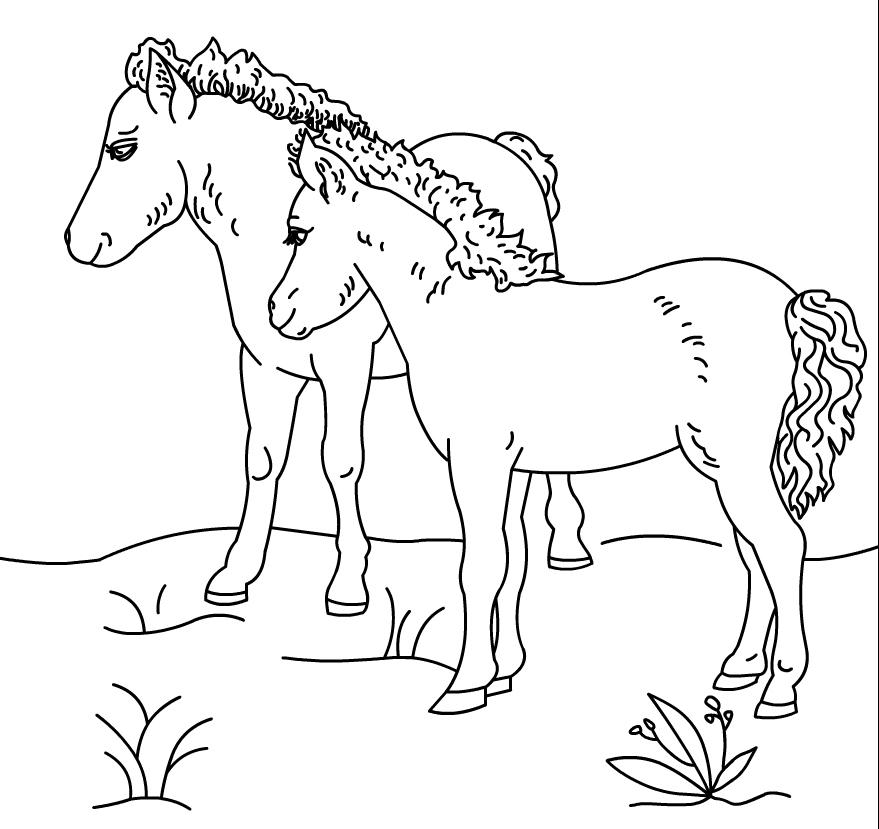 Coloriage poneys à imprimer