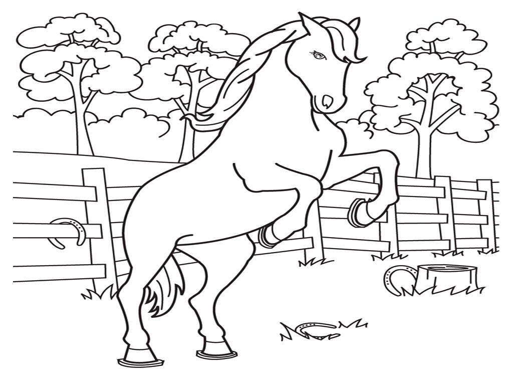 Coloriage poney sauteur