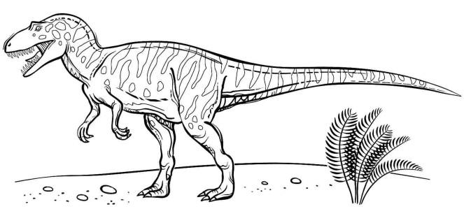 Coloriage vélociraptor gratuit
