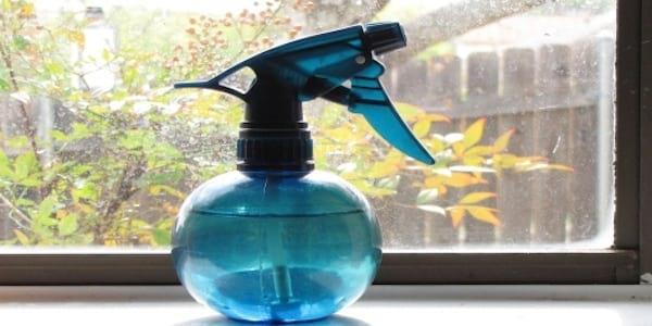 Bonus : le spray anti-mouche à la citronnelle