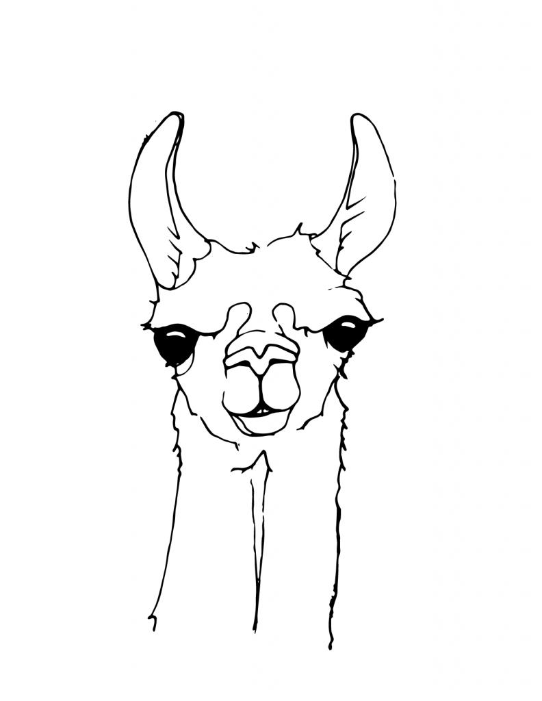 Coloriage visage de lama mignon