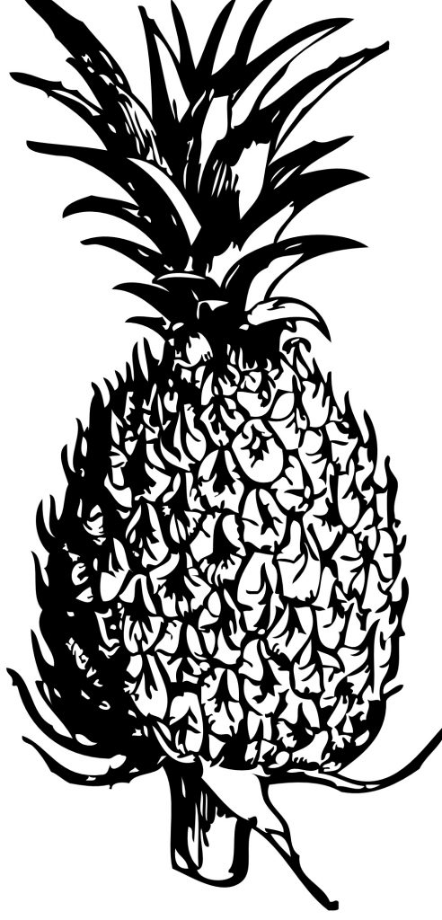 Coloriages d'ananas