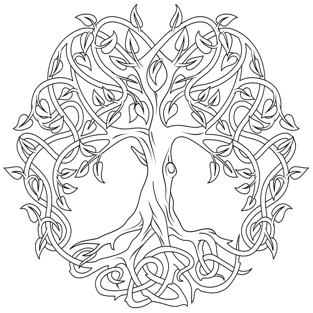 Coloriage arbre de vie celtique