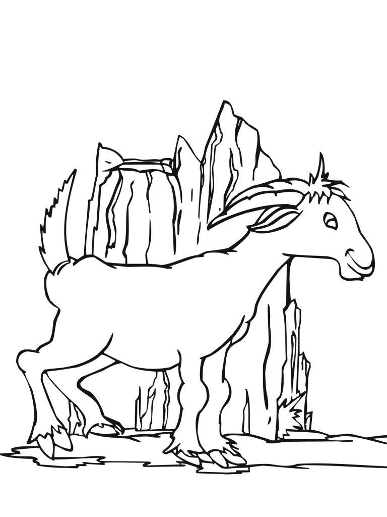 Coloriage de chèvre