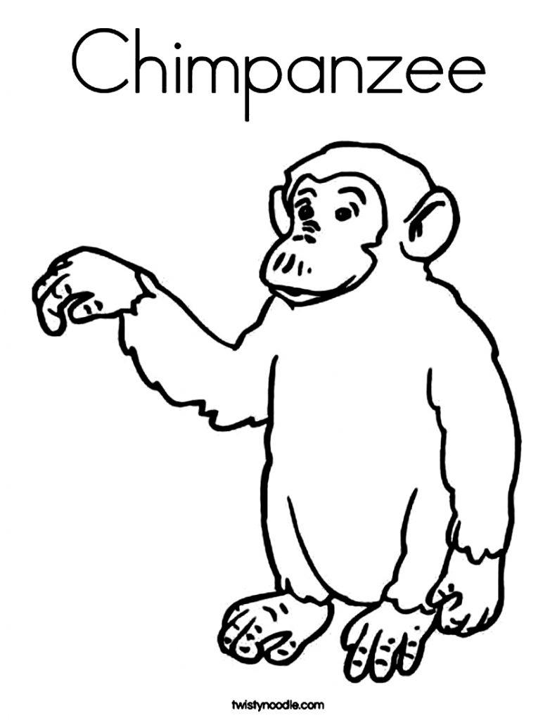 Coloriage bébé chimpanzé