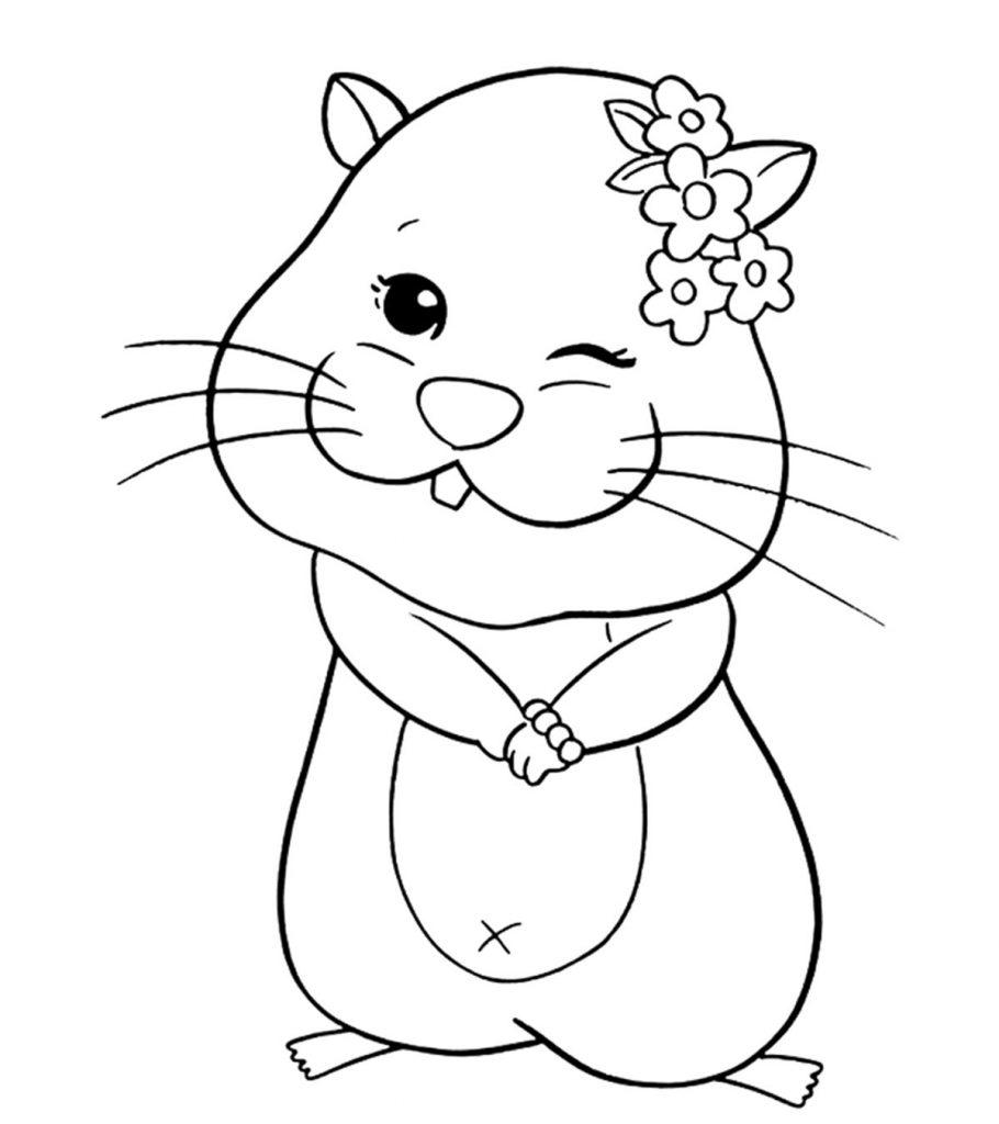 Coloriage de hamster doux